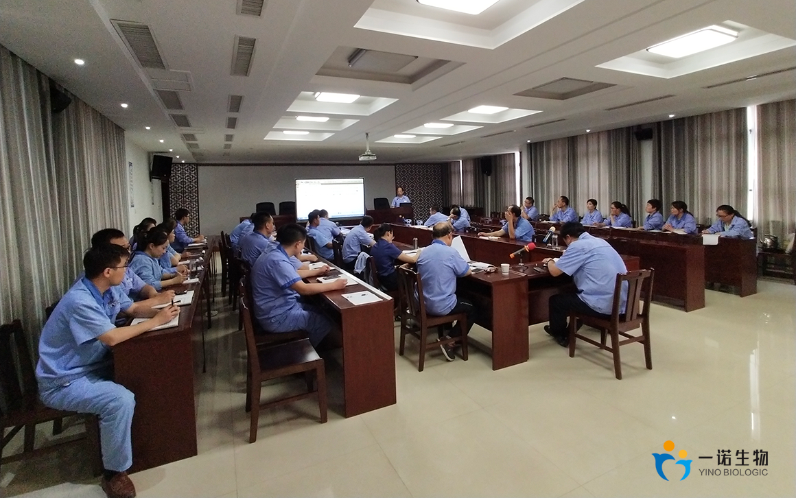 Summary Meeting of Shandong Yino in the First Half of 2019